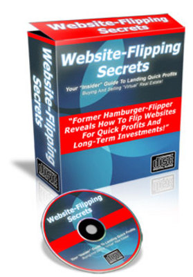 Product picture Instant Profits Flipping Websites